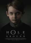 The Hole in the Ground Review, A young mother living in the Irish countryside with her son suspects his increasingly disturbing behavior is linked to a mysterious sinkhole in the forest, and fears he may not be her son at all.